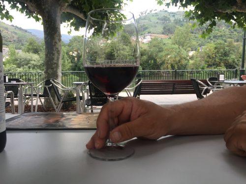 Vin ferie nydelse